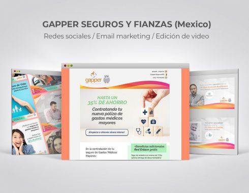 Portfolio » Gapper Seguros y Fianzas